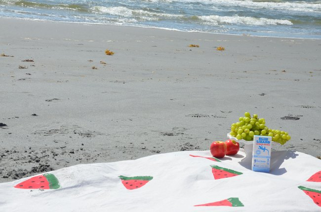 DIY Watermelon Picnic Blanket by Happy Family Blog