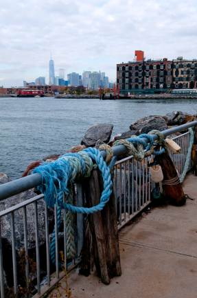 sorties autour de New York - Red Hook
