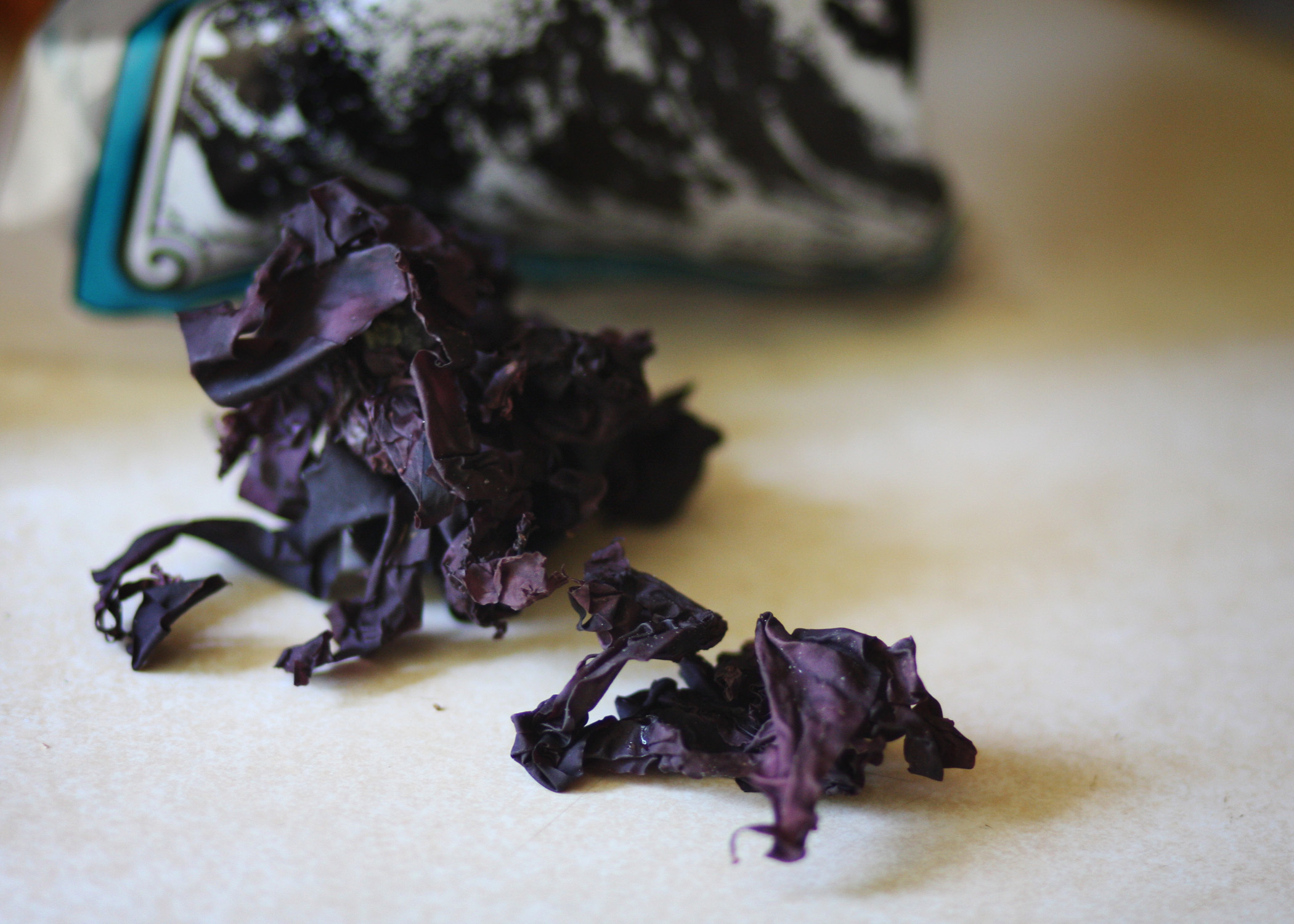 Dulse Up Close