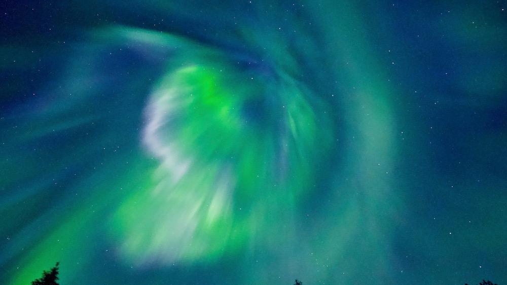 Happy-Fox-Aurora-dinner-green-aurora-p