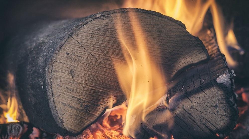Happy-Fox-Boat-Trip-to-the-Nightless-Night-burning-log