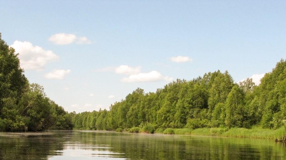 Happy-Fox-Boat-Trip-to-the-Ounasjoki-River-day-river
