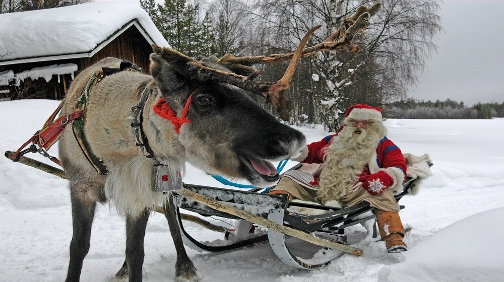 Happy-Fox-Christamas-is-coming-santa-claus-and-reindeer