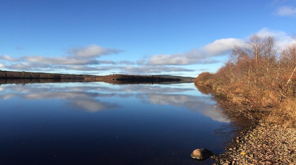 Happy-Fox-Fall-Colors-by-canoe-ounasjoki-blue-sky-s