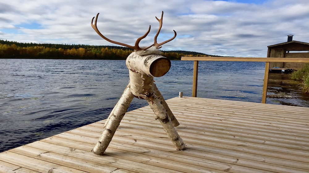 Happy-Fox-Fall-Colors-by-canoe-rudolf-reindeer-s