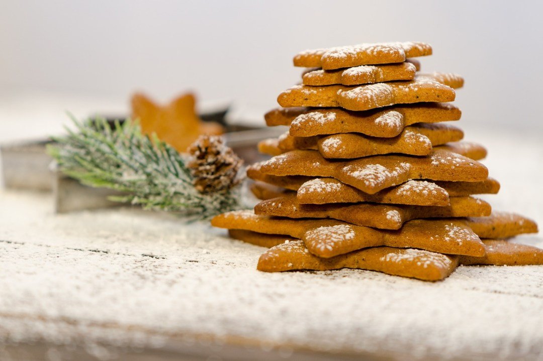 Happy-Fox-Finnish-Christmas-with-Santa-Claus-cookies