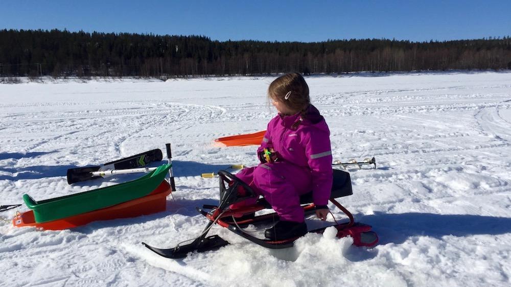 Happy-Fox-Fun-in-Winter-Sledding-girl