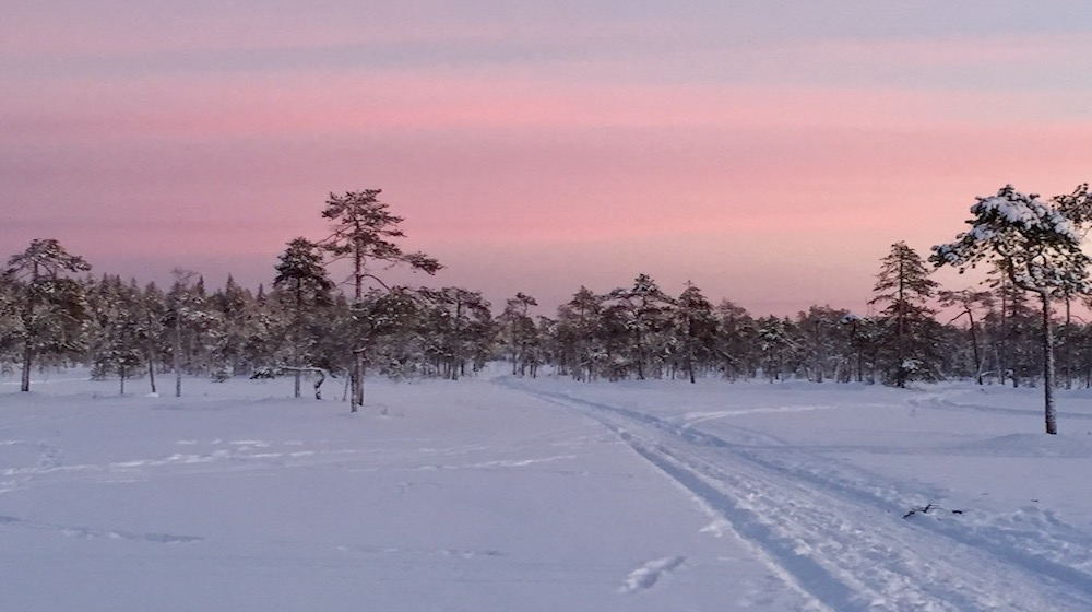 Happy-Fox-Magic-of-the-Forest-and-log-sauna-winter-swamp-and-red-sky