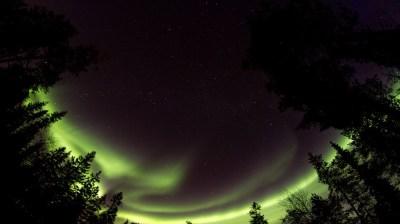 Happy-Fox-Northern-Lights-Hunt-in-hot-tube-and-a-log-sauna-aurora2 kopio