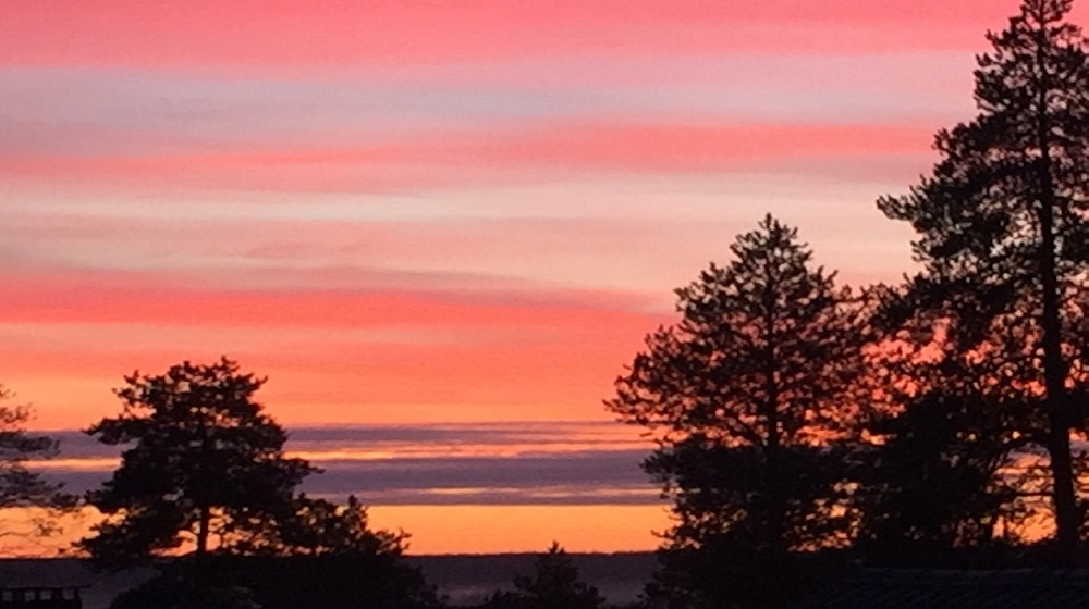 Happy-Fox-Trip-to-the-nightless-night-red-night-sky