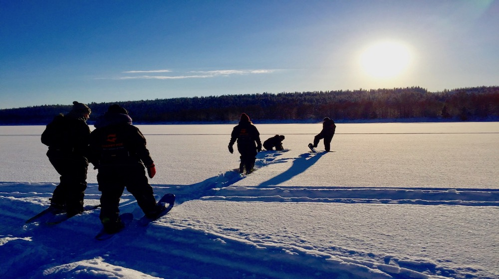 Forest in Winter – A snowshoeing trip to nature, 3 hours