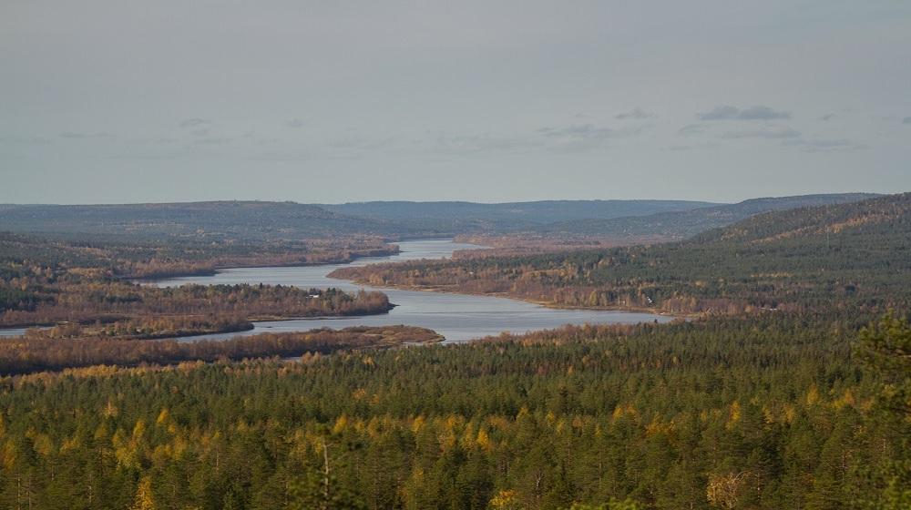 Happy-Fox-Fall-Colors-by-Canoe-ounasjoki-river-valley