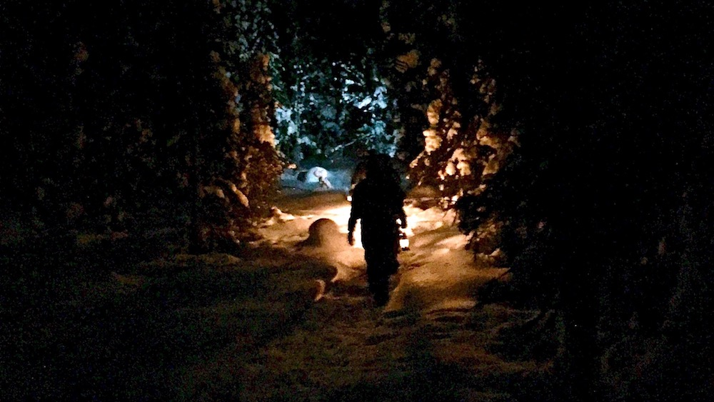 Happy-Fox-Arctic-Dark-Forest-Adventure-light-tunnel-p
