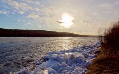 Arctic Nature Awakens, 3 hours
