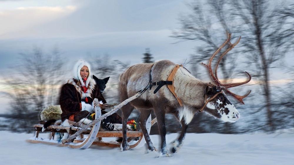 Arctic Reindeer Adventure, 2 hours