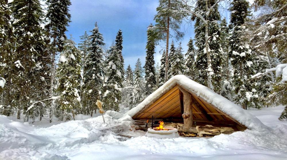 Happy-Fox-Arctic-reindeer-adventure-lean-to
