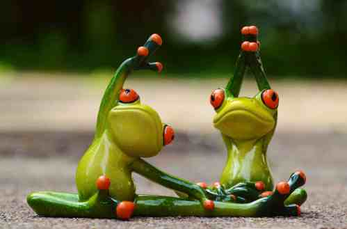 frogs doing stretches
