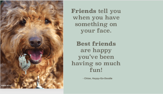 Red golden doodle's dogs face with leave and quote about friendship by Happy-Go-Doodle