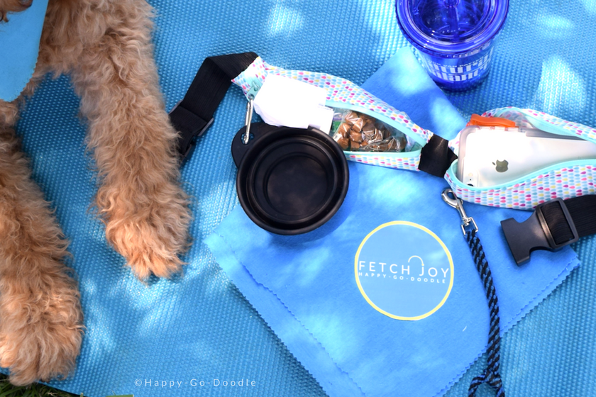 Dog's paws beside essentials for quick outings with your pet including: bandana, water container, dog water bowl, cell phone, leash, and dog waste bags