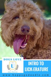 Welcome to Intro to Licker-ature a parody of books with dogs as the main characters Happy-Go-Doodle Chloe has her best smile on and is ready for her first class at Dogs Love U