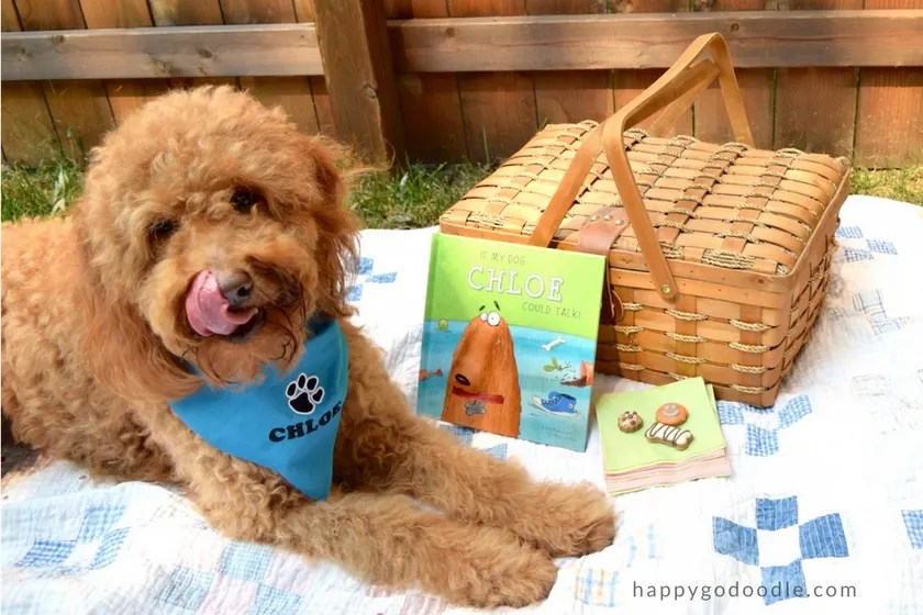 Red goldendoodle dog licking her chops and wearing a blue dog bandana while sitting beside a picnic basket and personalized dog book and frosted dog treats