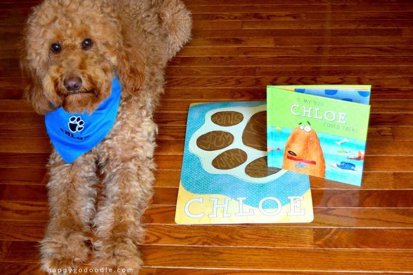Red goldendoodle dog wearing personalized blue bandana and sitting next to a personalized dog placemat and I See Me personalized children's storybook with the title If My Dog Could Talk on the cover of the book