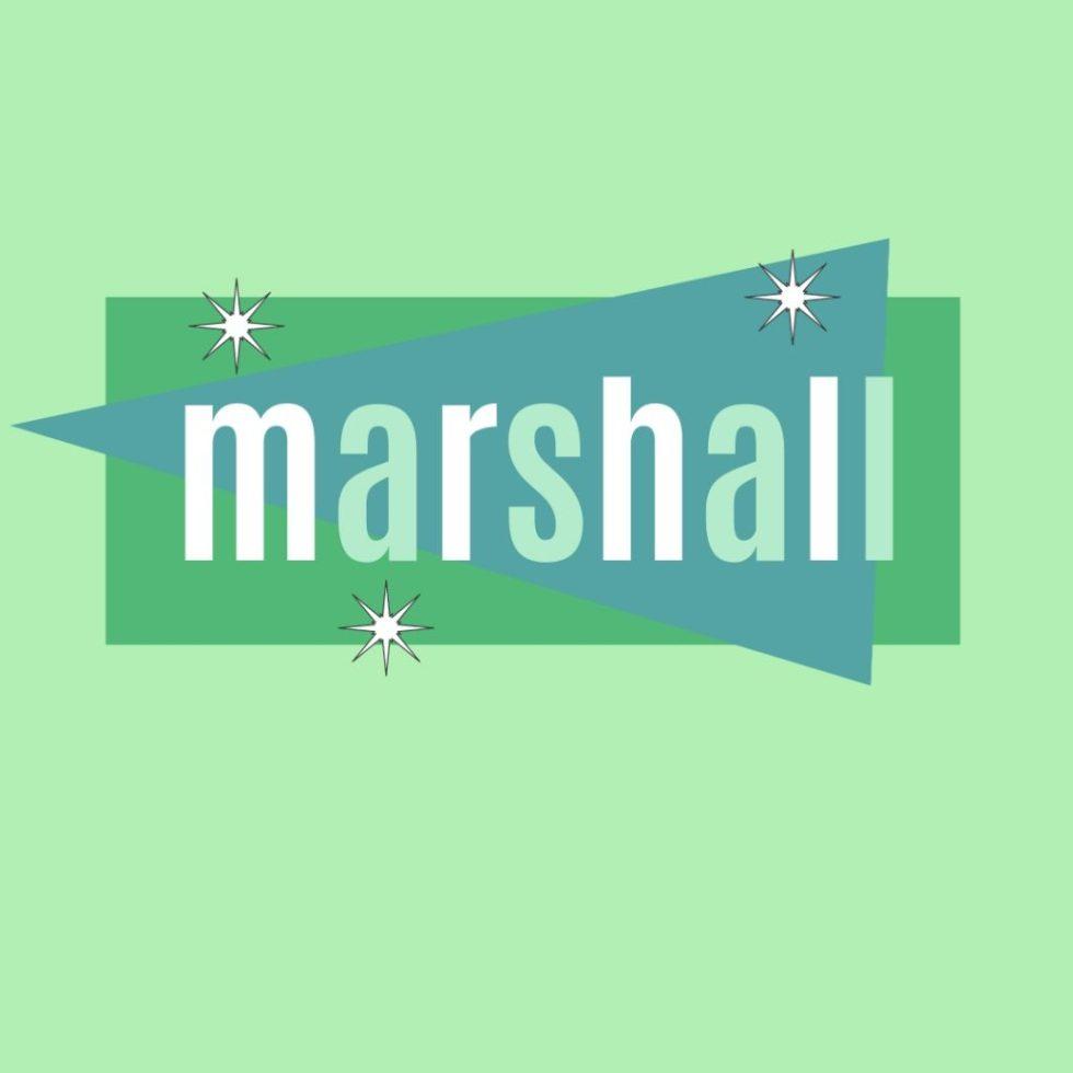 vintage name marshall as a human name for male dog