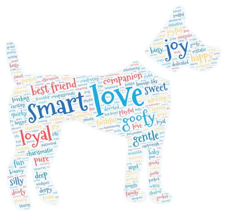 loveable doodles are described by dog owners with words in shape of a dog