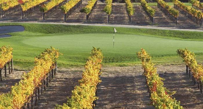 wente_golf