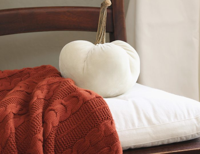 fall-home-tour-throw-final-sm-ver