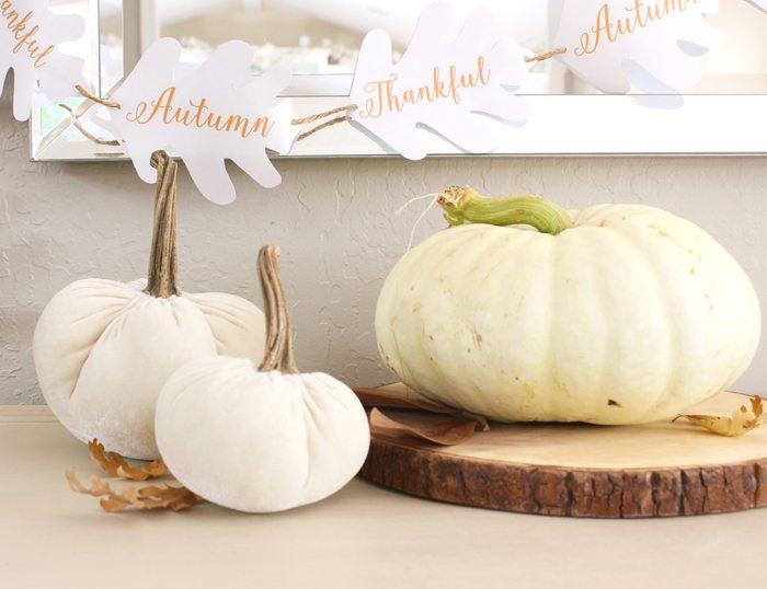 free fall printable pumpkin on table sm ver
