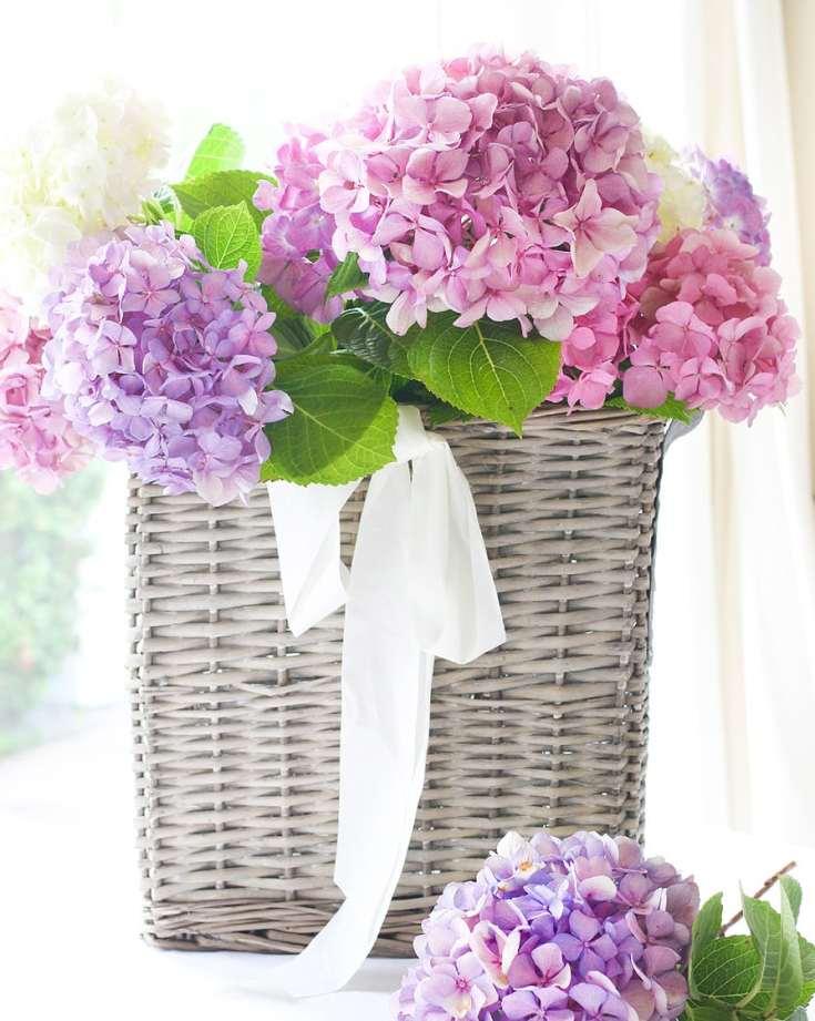 french basket with hydrangeas
