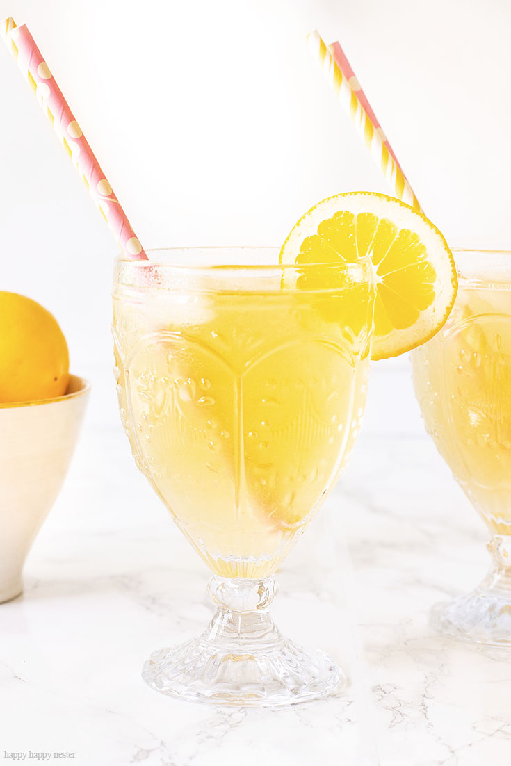 Add Lemons, Carbonation, Agave Syrup, White Tea to make this Delicious Sparkling Tea.This is a yummy Carbonated Lemon Iced Tea Recipe that is a refreshing sparkling tea. Since I have a ton of Meyer lemons that is what I used, but you can use lemons for this recipe. This is a sweet tea with bubbly carbonation. #icetearecipe #icetea #sparklingdrinks #drinkrecipes #lemonrecipes #meyerlemons #sparklingteas