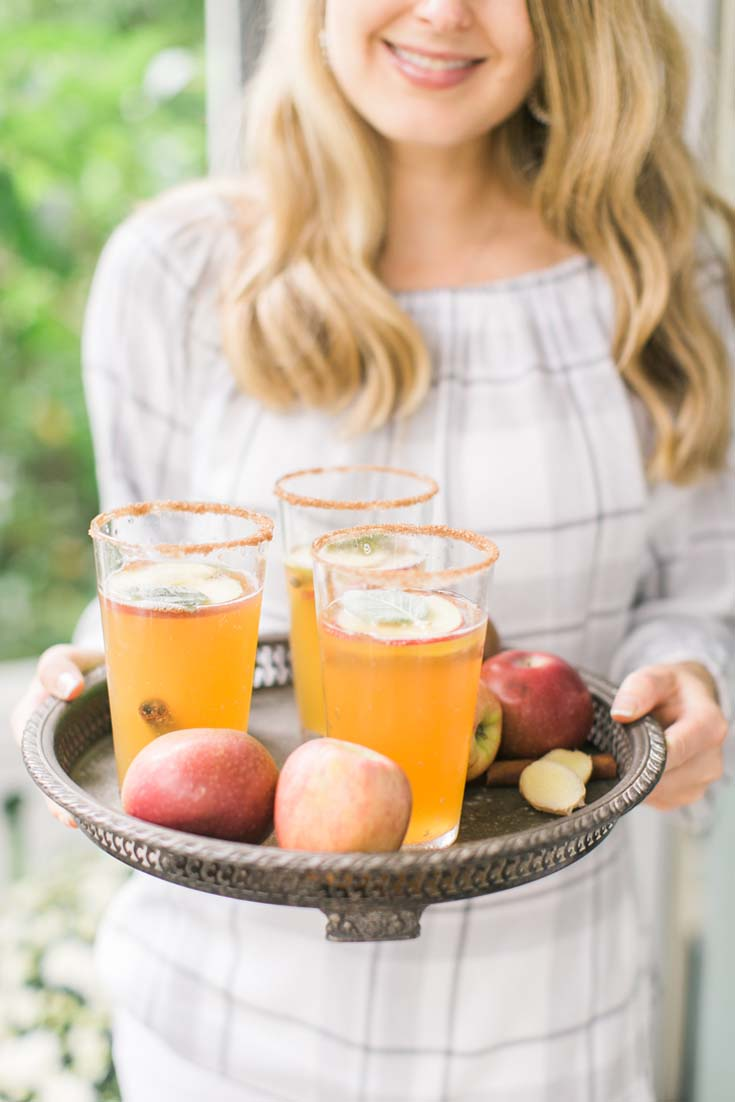 Ginger Apple Spritzer. Here are 10 Non-Alcohol Summer Drinks that you'll love. Need some recipes this summer, well, we have you covered if you need slushies, teas, fruit drinks and more. These bloggers have tested them, and these are their favorites. #drinks #summerdrinks #cocktail #drinkrecipes #recipes #happyhour #weddings #weddingdrinks