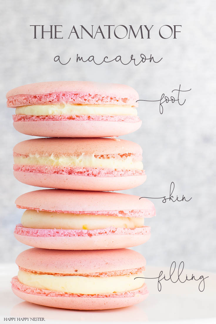 Here is the Anatomy of a French Macaron Cookie. I have been obsessed with finding The Best Basic French Macaron Recipe for what feels like an eternity! I'm happy to say that I mastered baking them. This yummy recipe combines the meringue cookie with a buttery French sabayon filling. #macaron #cookie #frenchmacaron #meringue #italianmeringue #baking #bestcookie #bake