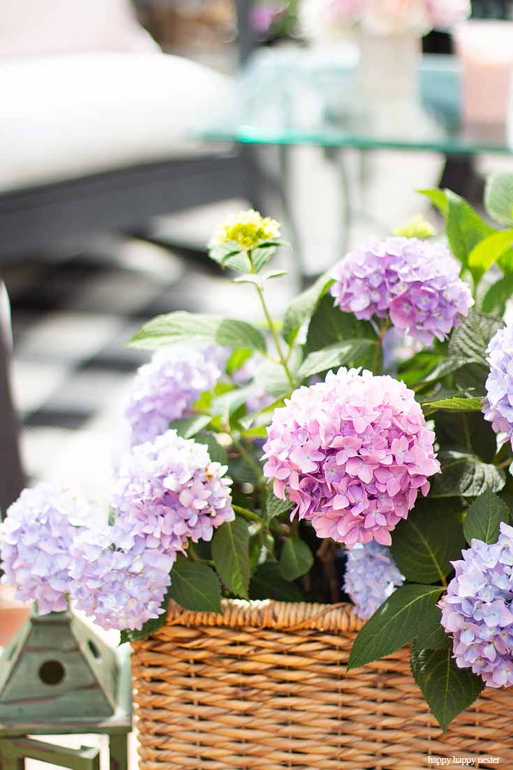 Check out my Container Gardening Ideas for your summer planning. It's not too late to get your flower pots started for summer. Place plants and flowers in unusual containers like these hydrangeas in a rattan basket.#gardening #flowers #garden