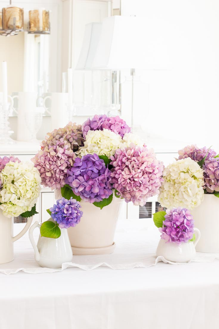 Summer Table Decor with Hydrangeas is an easy and informative post on how to decorate your table. Also, the post covers a little information about hydrangeas. #summertables #tabledecor #hydrangeas
