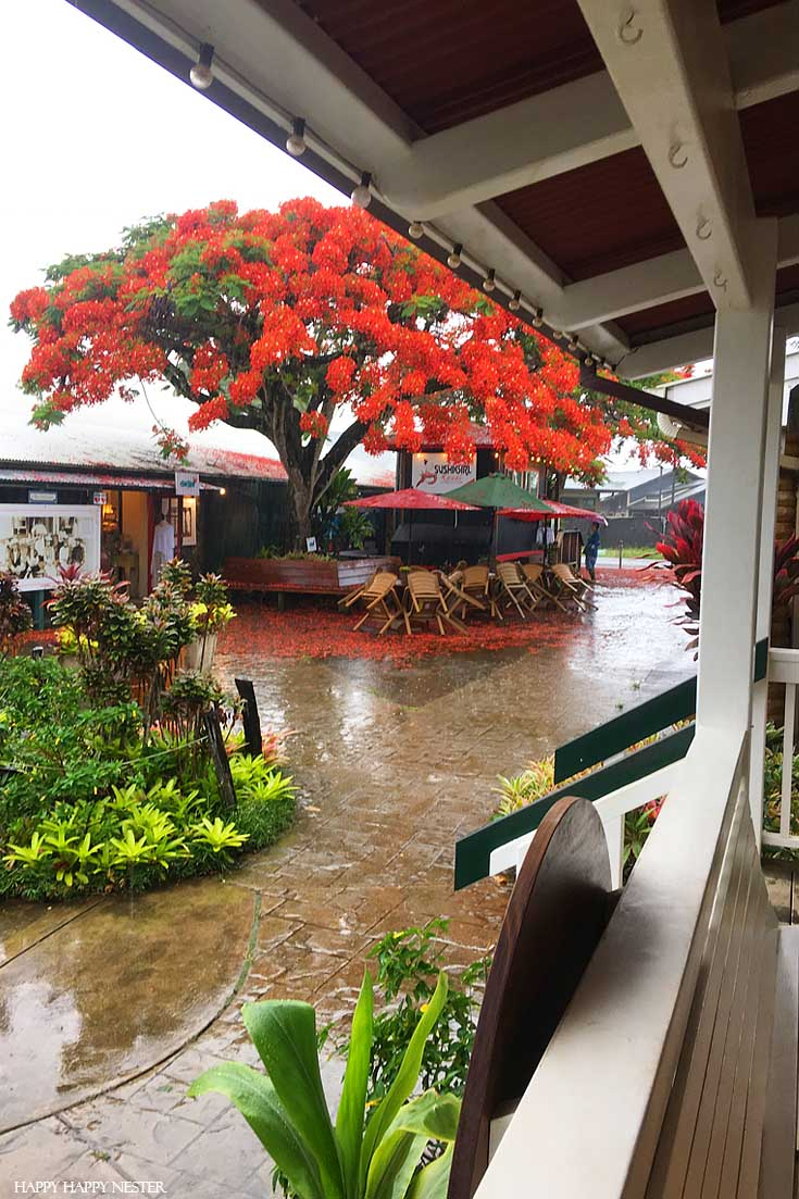 This adorable shopping center in Kauai is the best place to hang out in for a couple of hours. Check out this trip before you book your trip to Kauai. #vacations #tropical #trips #hawaii