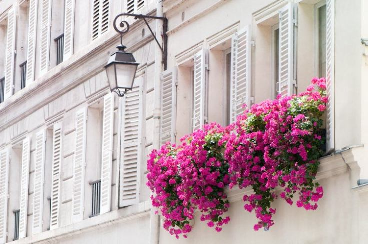 window boxes photos of Paris France