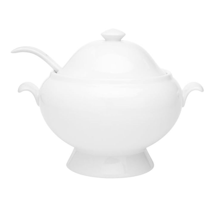 classic beautiful soup tureen