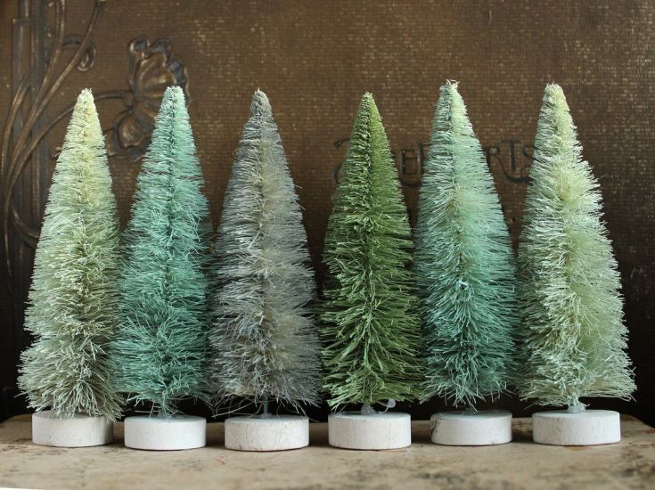 evergreen green sisal trees