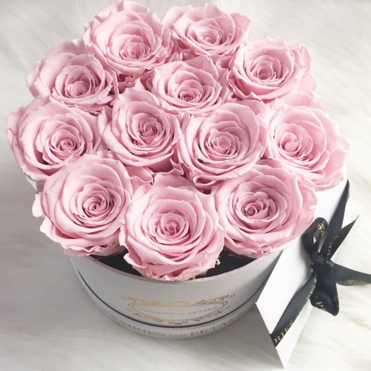 fresh beautiful roses make great valentine's day gifts