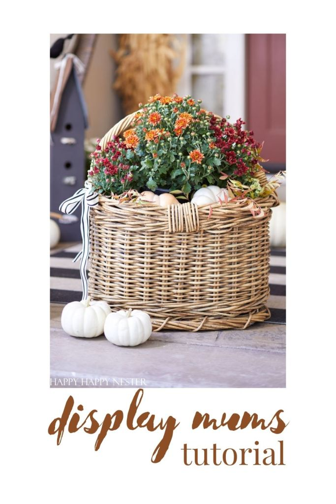 fall mum display ideas pin
