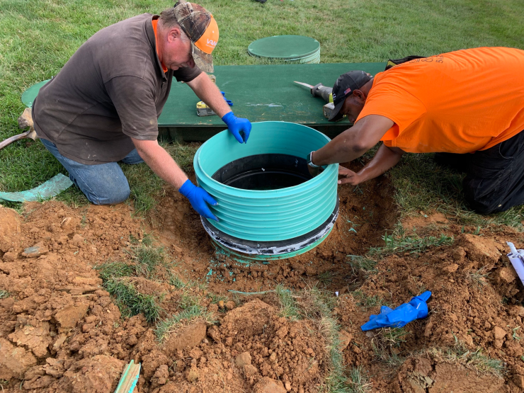 What to Do When Tree Roots Grow into a Septic Tank and