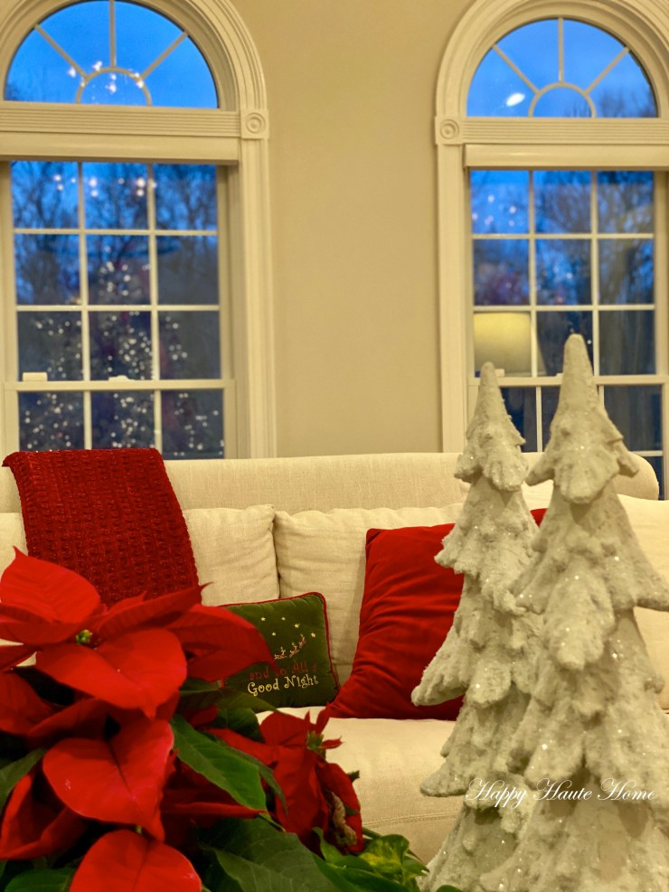 Christmas Sunroom 2019-25