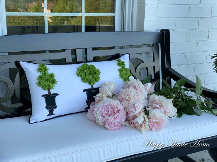 Porch cushions-7