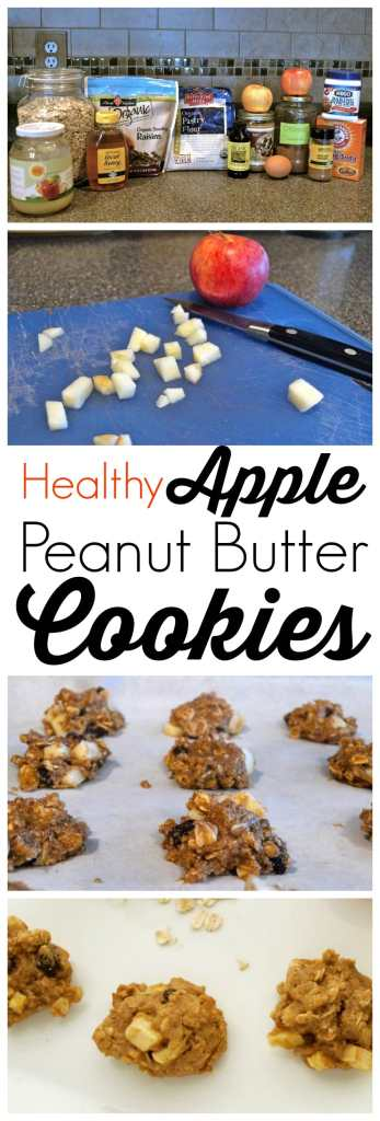 These healthy, whole grain cookies are made with no refined flour, no refined sugar and are only 49 calories each! Great healthy way to satisfy your sweet tooth. Super quick and easy, no fuss recipe.