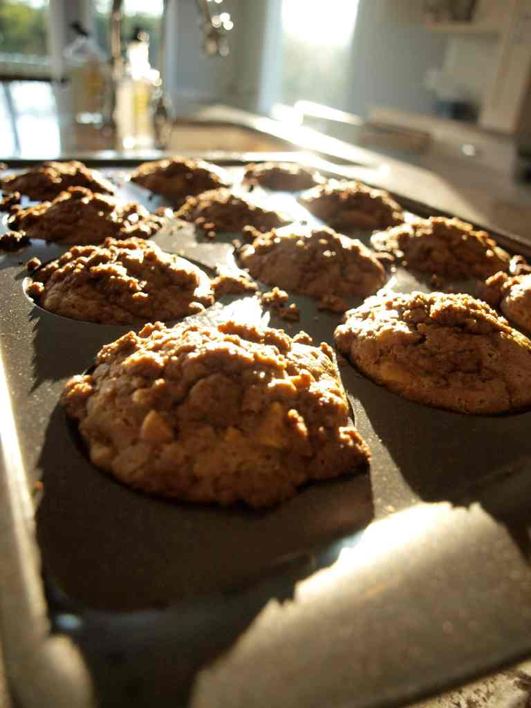 apple cinnamon crumb muffins recipe