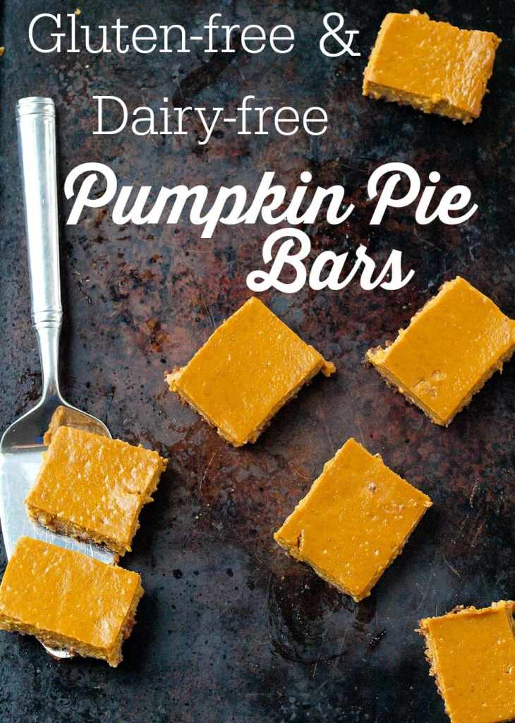 These Pumpkin Pie Bars will be the hit of your Thanksgiving dessert table! The gluten-free nut-based crust is delicious and they are dairy-free, too!