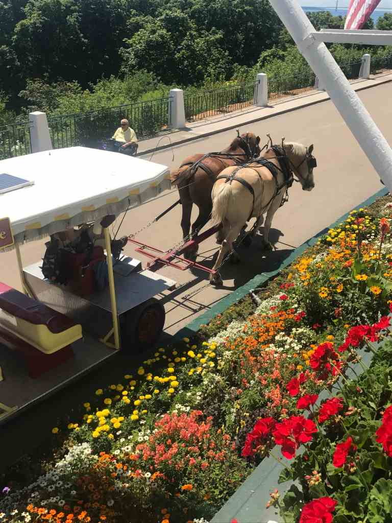 Northern Michigan Vacation--horses on Mackinac Island